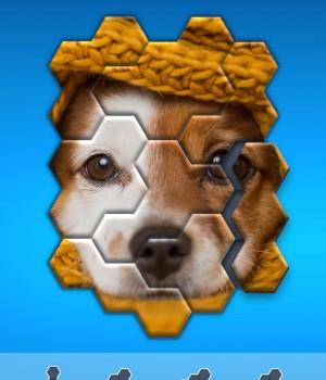 Hexa Jigsaw Puzzle Ekran Görüntüleri - 1