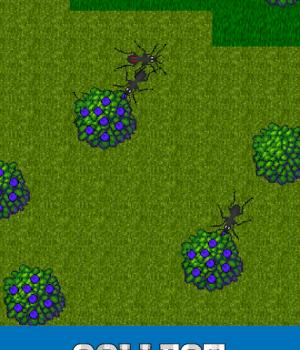 Ant Evolution Ekran Görüntüleri - 1