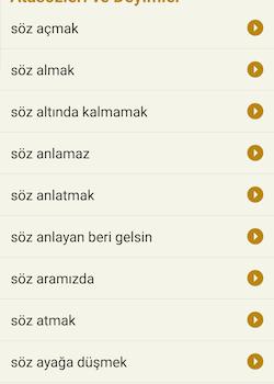 Türkçe Sözlük Ekran Görüntüleri - 3