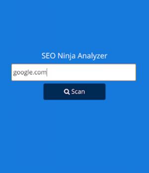 Website SEO Analyzer Ekran Görüntüleri - 1