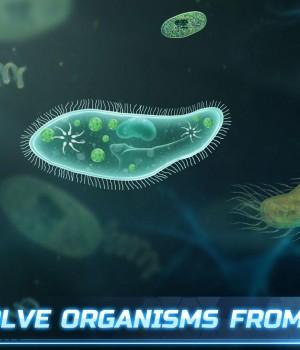 Life on Earth Ekran Görüntüleri - 2