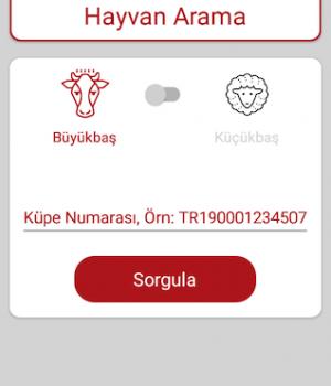 Türkvet Ekran Görüntüleri - 2