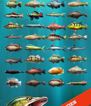 Let's Fish Ekran Görüntüleri - 14