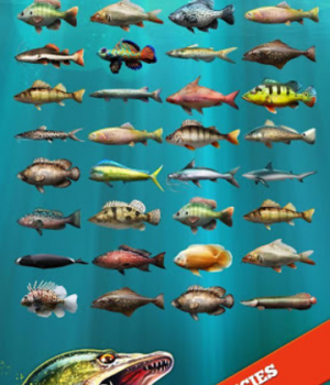 Let's Fish Ekran Görüntüleri - 3