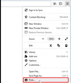 Firefox Ekran Görüntüleri - 9