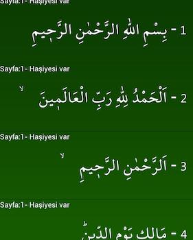 İnternetsiz Kuran-ı Kerim Ekran Görüntüleri - 4