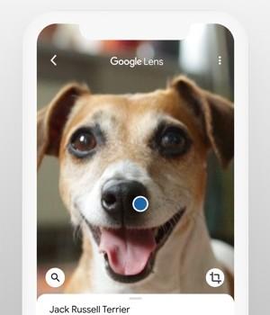 Google Ekran Görüntüleri - 2