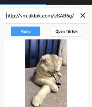 Downloader for TikTok Ekran Görüntüleri - 2