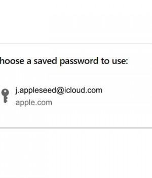 iCloud Passwords Ekran Görüntüleri - 1