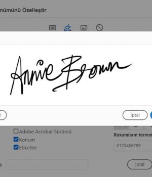 Adobe Acrobat Professional Ekran Görüntüleri - 2