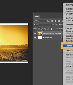 Adobe Stock Ekran Görüntüleri - 3