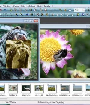 PhotoFiltre Ekran Görüntüleri - 1