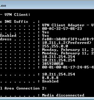 SoftEther VPN + VPN Gate Client Ekran Görüntüleri - 4