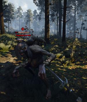 The Witcher 3 First Person Mode Ekran Görüntüleri - 1