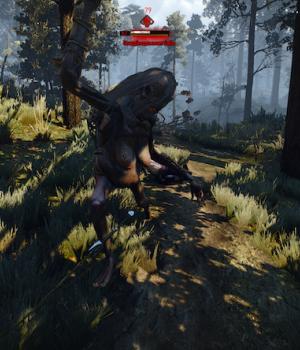 The Witcher 3 First Person Mode Ekran Görüntüleri - 2