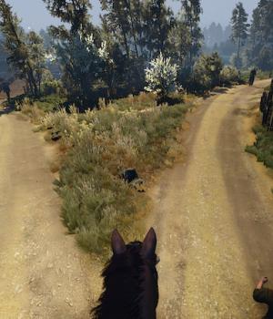 The Witcher 3 First Person Mode Ekran Görüntüleri - 7