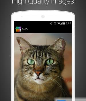 BHD Ekran Görüntüleri - 4