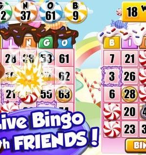Bingo PartyLand Ekran Görüntüleri - 5