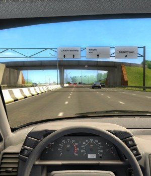 City Car Driving Ekran Görüntüleri - 4