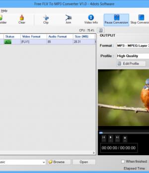 Free FLV To MP3 Converter Ekran Görüntüleri - 2