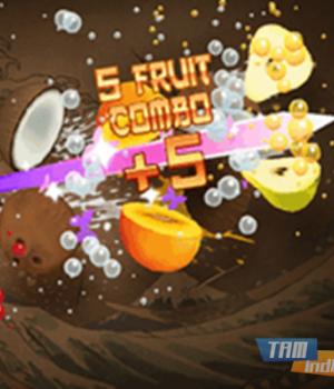 Fruit Ninja Lite Ekran Görüntüleri - 3