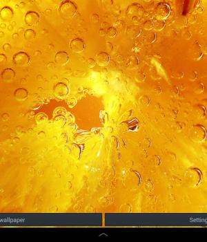 Galaxy S4 Lemon Ekran Görüntüleri - 2