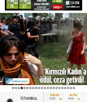 Gazetelik Ekran Görüntüleri - 2