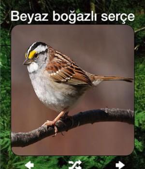 Kuş Sesleri Ekran Görüntüleri - 1