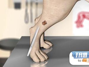 Pet Vet Doctor Ekran Görüntüleri - 2
