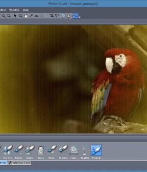 Photo-Brush Ekran Görüntüleri - 4