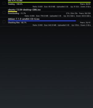 tTorrent Lite Ekran Görüntüleri - 4
