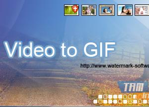 Video to GIF Ekran Görüntüleri - 3