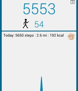 WalkLogger Pedometer Ekran Görüntüleri - 5