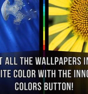 Wallpapers HD Ekran Görüntüleri - 1