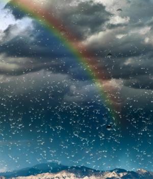 Yağmur Damlası Duvar Kağıdı Ekran Görüntüleri - 3
