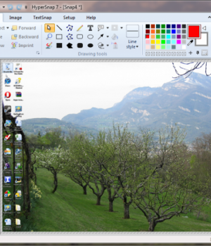 HyperSnap Ekran Görüntüleri - 2