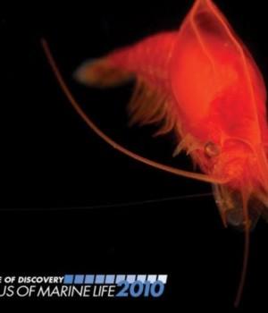 Census of Marine Life Ekran Görüntüleri - 3