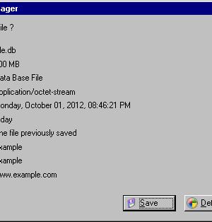 Easy Download Manager Ekran Görüntüleri - 3