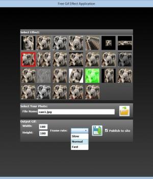 Free Gif Effect Ekran Görüntüleri - 3