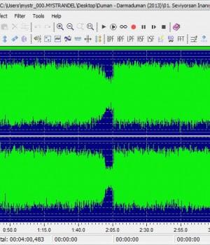 Leapic Audio Editor Ekran Görüntüleri - 3
