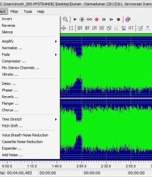 Leapic Audio Editor Ekran Görüntüleri - 2