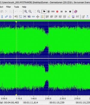 Leapic Audio Editor Ekran Görüntüleri - 1