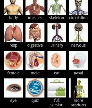 Visual Anatomy Free Ekran Görüntüleri - 1