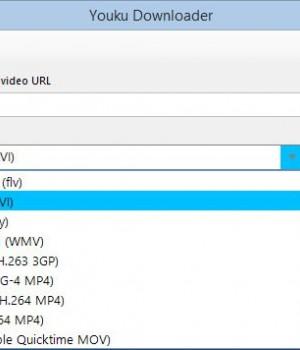 Youku Downloader Ekran Görüntüleri - 1