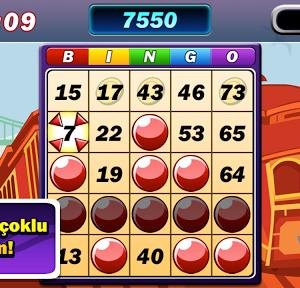 Bingo Patlaması Ekran Görüntüleri - 1
