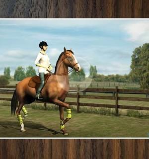 My Horse Ekran Görüntüleri - 2