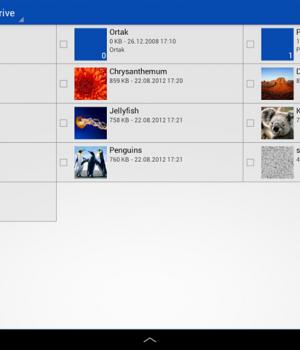 SkyDrive Ekran Görüntüleri - 3