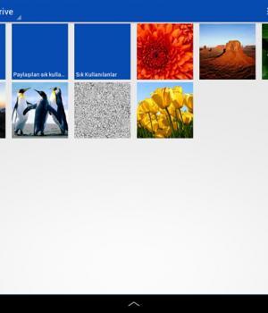 SkyDrive Ekran Görüntüleri - 4