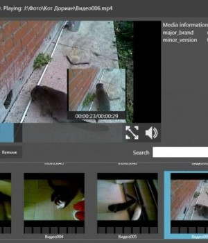 BitGriff Advanced Media Player Ekran Görüntüleri - 5