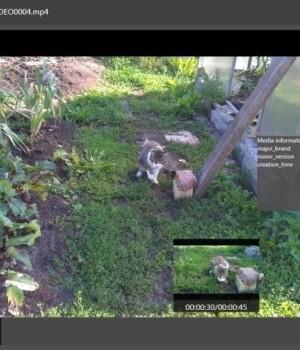 BitGriff Advanced Media Player Ekran Görüntüleri - 3
